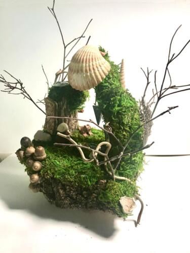Wild Fairie House 1 - Journey well and wise