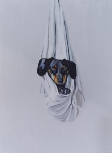 Dachshund - Lisa Nance